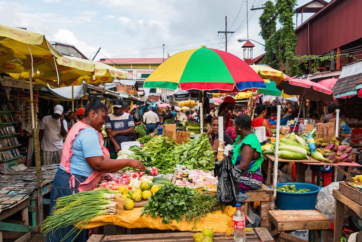 Фото №8 - Нелатинская Америка: загадочная Гайана в 10 фотокарточках