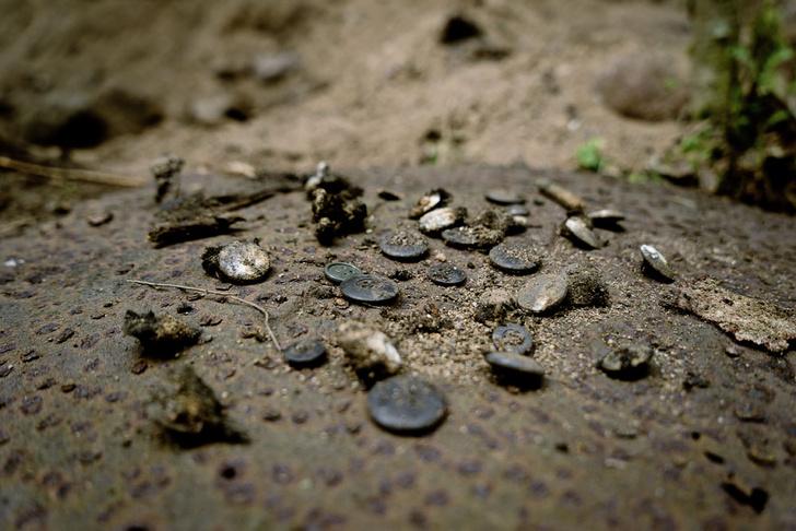 Фото №4 - Заповедник войны: путешествие на остров Тютерс