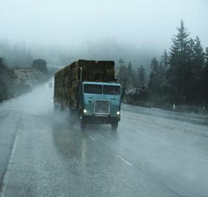 Фото №1 - Дождливое воскресенье