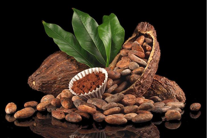 Фото №1 - 192 года назад... Запатентовали революционную технологию в производстве шоколада