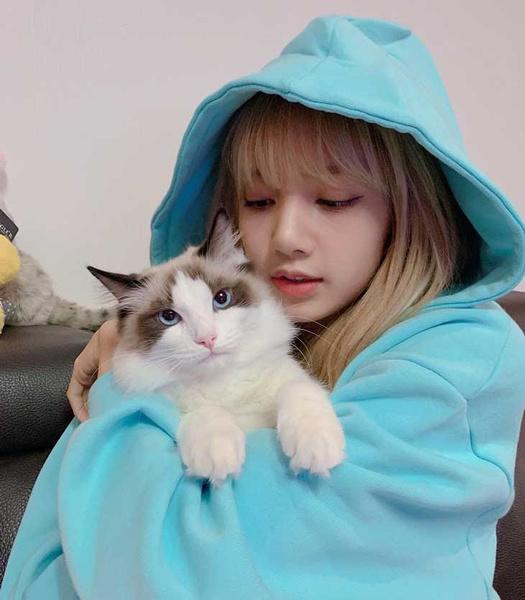 Фото №2 - Cat lover: у Лисы из BLACKPINK появился пятый котик 😺