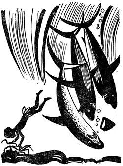 Фото №1 - Пунья и царь акул