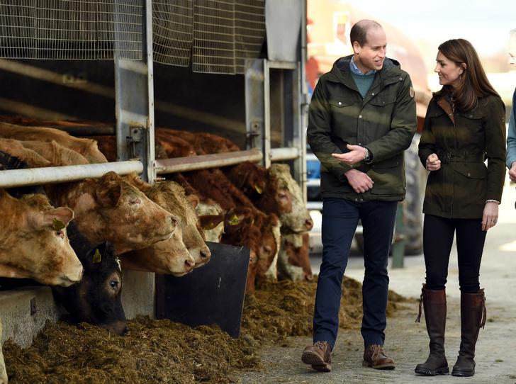 Фото №4 - Прощай, Корона: почему герцогиня Кейт может отказаться от королевских обязанностей