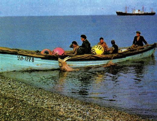 Фото №1 - Пока океан спокоен...