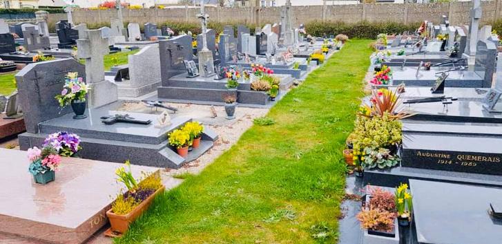 Фото №8 - История французского садовника, который украсил непроданными цветами целое кладбище, стала вирусной (фото)