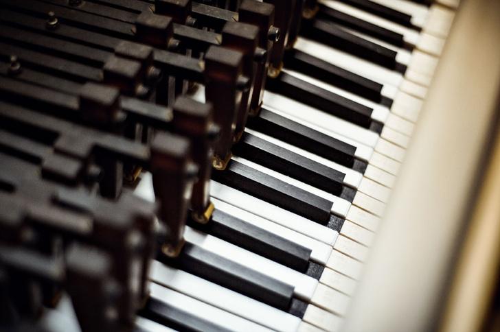Фото №3 - Пианиссимо: как устроен лучший в мире рояль