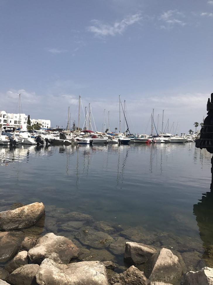 Фото №1 - Гид по солнечному Тунису