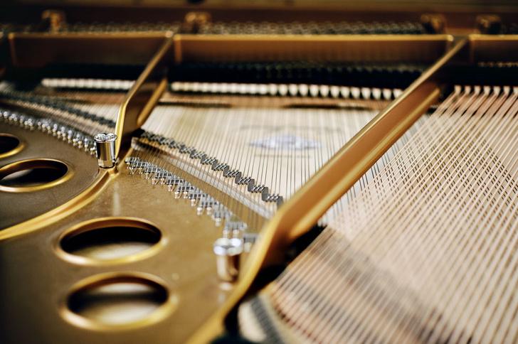 Фото №8 - Пианиссимо: как устроен лучший в мире рояль