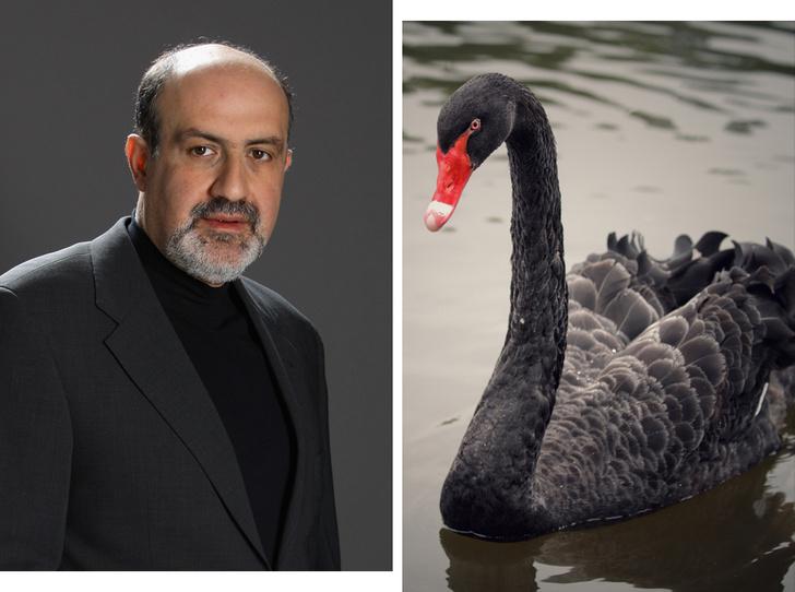 Фото №1 - Теория черных лебедей: как жить в мире, где невозможно ничего предсказать