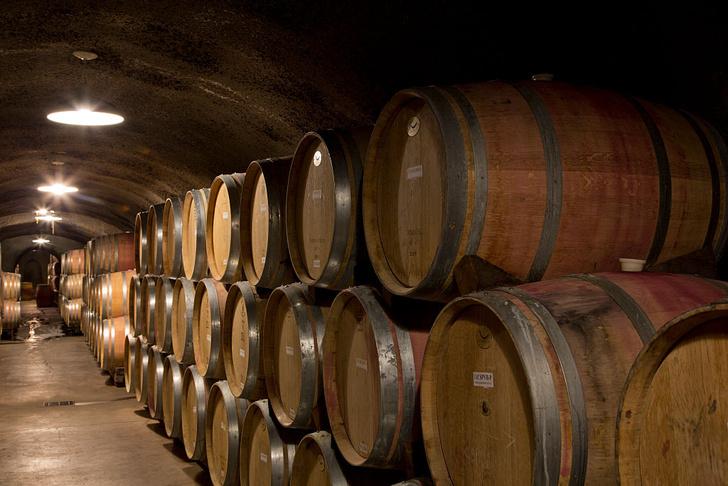 Фото №1 - Урожай вина в Европе упал до рекордно низких показателей