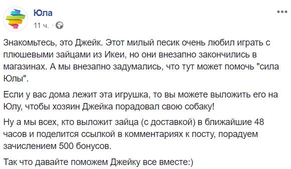 Фото №6 - Москвич попросил IKEA вернуть в продажу любимую игрушку его собаки, и вот что произошло