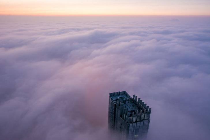 Фото №1 - За туманом