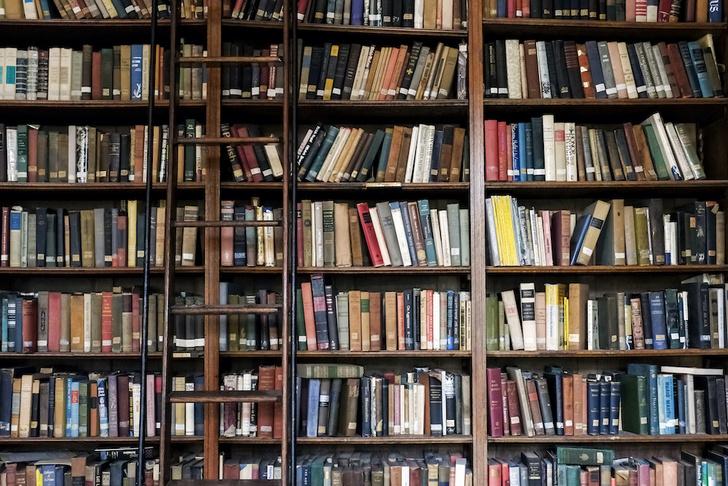 Фото №1 - Что читают визионеры: любимые книги Билла Гейтса, Илона Маска, Уоррена Баффетта