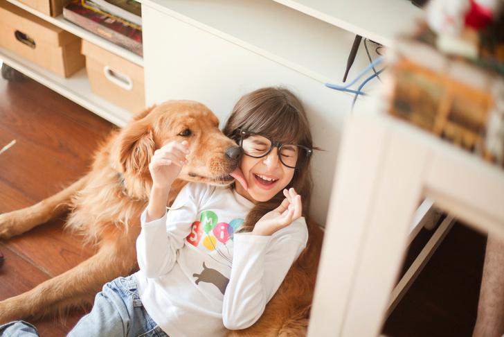Фото №3 - 5 опасных заблуждений о дружбе ребенка и собаки