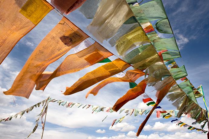 «Сила добра. Далай-лама о том, как сделать свою жизнь и мир лучше» Дэниела Гоулмана