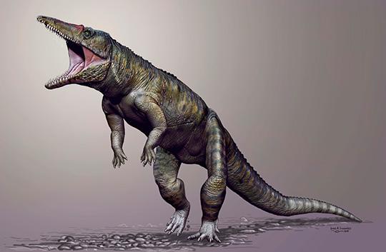 Фото №1 - Палеонтологи воссоздали образ древнего прямоходящего крокодила
