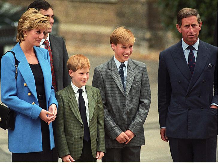 Фото №2 - Фатальная ссора: чем конфликт Уильяма и Гарри опасен для монархии