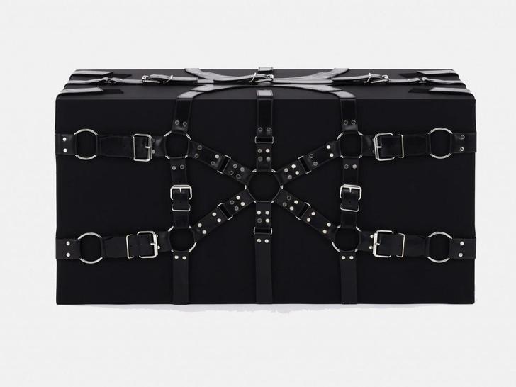 Фото №2 - Дизайнерские версии культового сундука Louis Vuitton