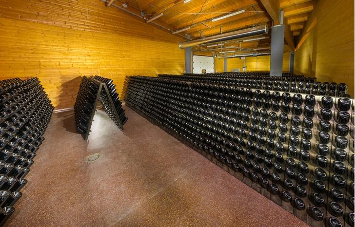 Фото №6 - Как устроена и работает одна из самых современных виноделен России