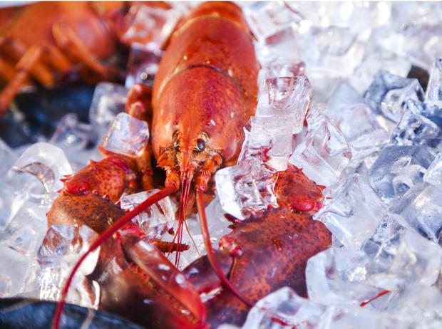 Фото №4 - Как правильно выбирать морепродукты: советы эксперта