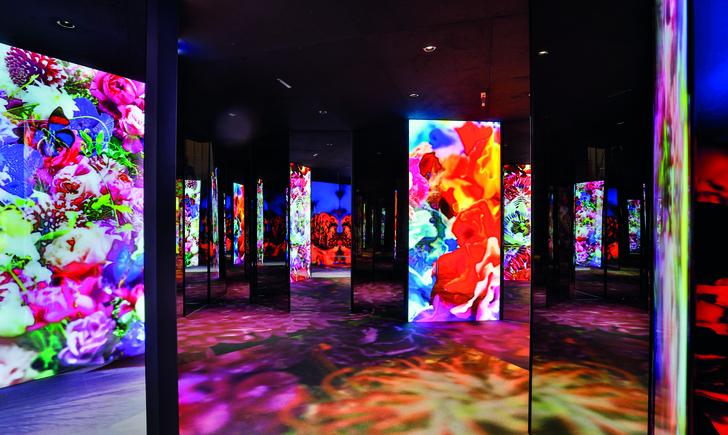 Фото №8 - Выставка Van Cleef & Arpels в Париже