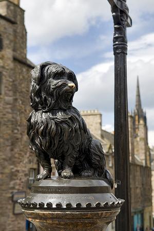 Фото №5 - Путешествие в Шотландию: прогулки в исторических декорациях