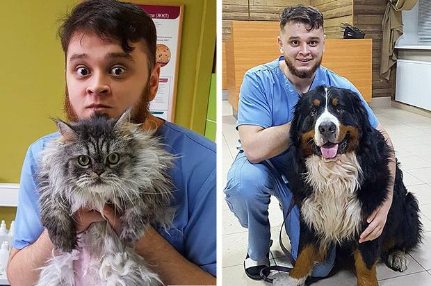 Фото №1 - Ветеринар на Урале выхаживал животных, которых ему приносили усыпить. Зоозащитница пожаловалась на него в прокуратуру