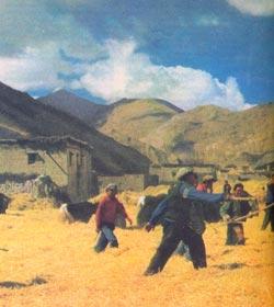 Фото №5 - По Тибету