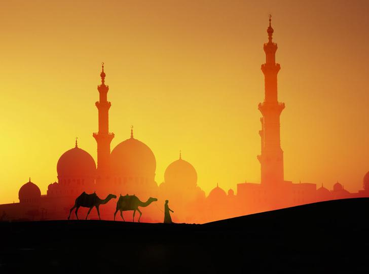 Фото №1 - Один кадр: ОАЭ