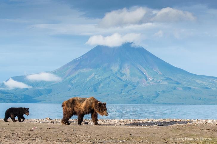 Фото №1 - РГО запустило онлайн-голосование VI фотоконкурса «Самая красивая страна»