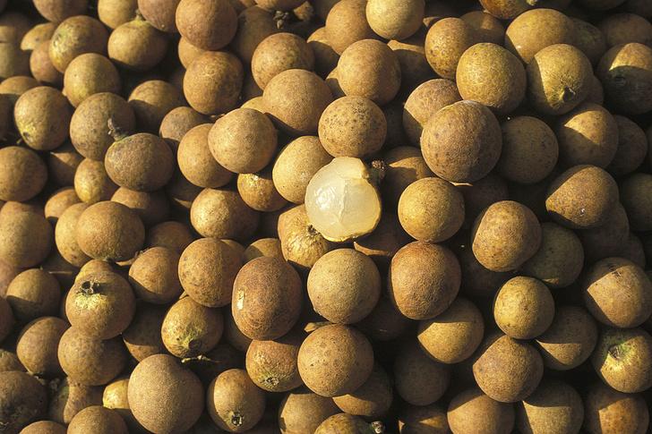 Фото №8 - Фруктовая экзотика: 10 плодов с удивительным вкусом