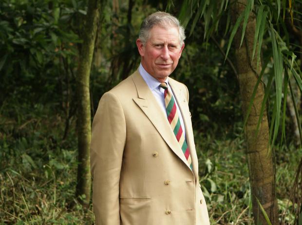 Фото №1 - Жертва монарха: о чем Чарльзу придется забыть, когда он станет королем
