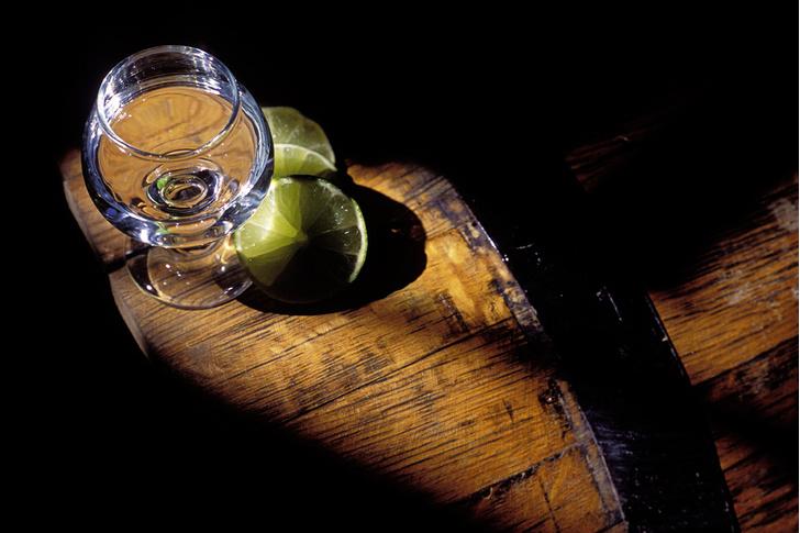 Фото №1 - Национальное достояние: текила — грусть агавы