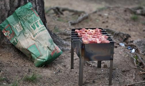 Фото №1 - Роспотребнадзор рассказал, как безопасно приготовить шашлык на природе