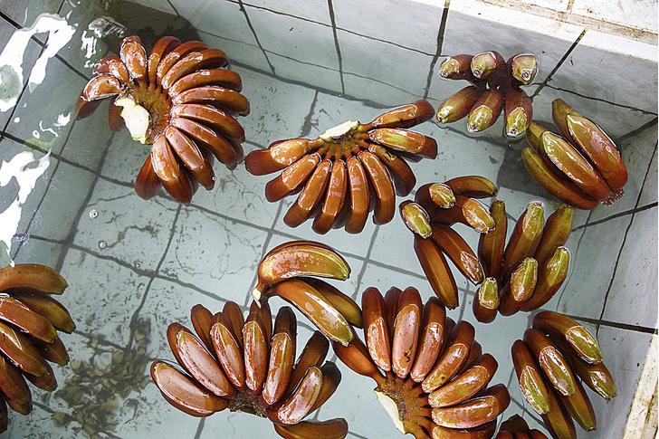 Фото №17 - Рабочий момент: банановый рай
