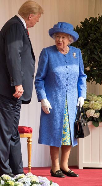 Фото №3 - Какие рекомендации королевские эксперты дали Дональду Трампу