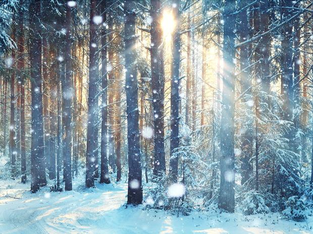 Фото №2 - Гороскоп на зиму 2021 по знакам Зодиака: сверяемся со звездами