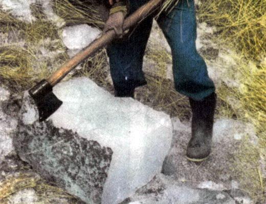 Фото №1 - Почем сегодня лед?