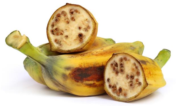 Фото №2 - Как выглядит дикий банан в живой природе
