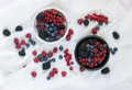 Чем вредна для нас фруктоза