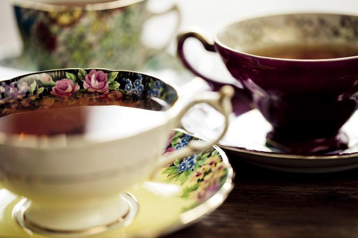 Фото №1 - Ученые Нидерландов рекомендуют пить пять чашек чая в день