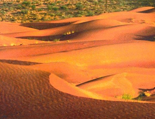 Фото №1 - Бойся песков