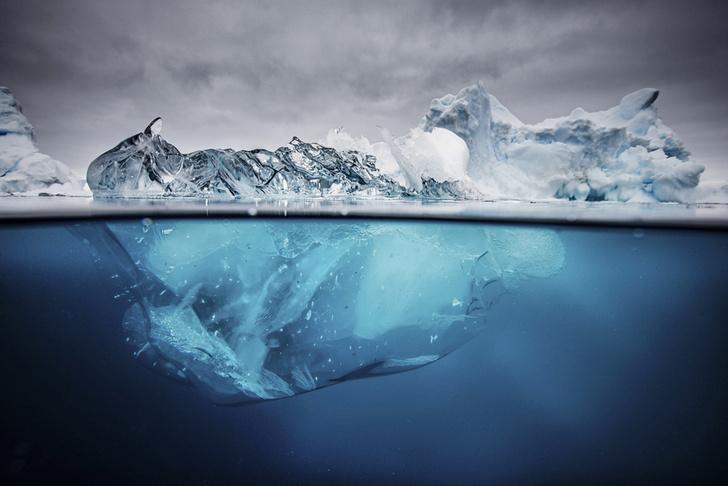 Фото №1 - Инфографика: Всемирный потоп