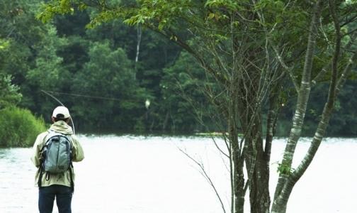 Фото №1 - Эпидемиологи сказали, где в Ленобласти наиболее агрессивные клещи