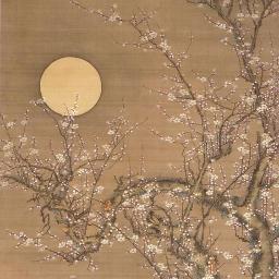 Фото №6 - Тест: Выбери рисунок сакуры, и мы скажем, чего тебе не хватает для счастья