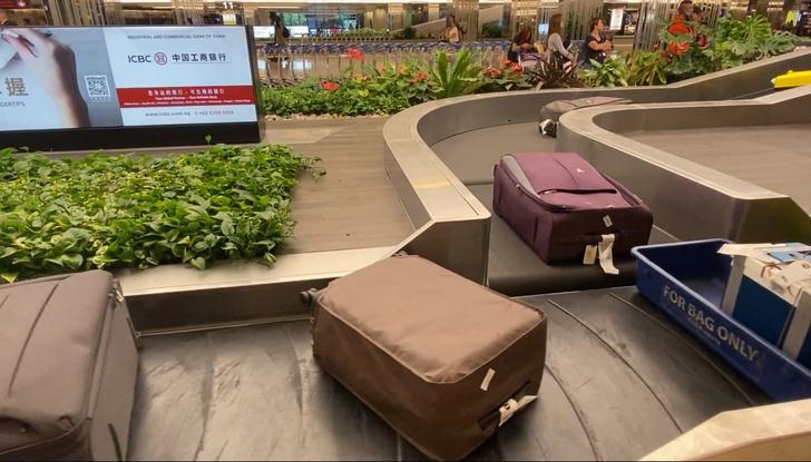 Фото №1 - Умная багажная лента в аэропорту Сингапура (видео)