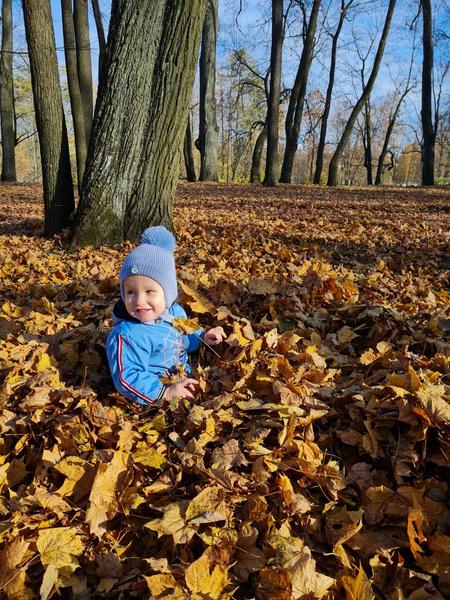 Фото №18 - Детский фотоконкурс «Собираем гербарий»: выбирай лучшее фото