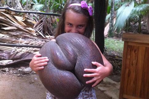 Фото №3 - Сейшелы: отпуск с ребенком