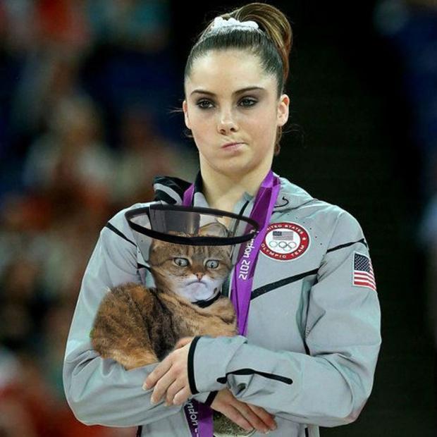 Фото №9 - Лучше фотожабы на кота в защитном воротнике