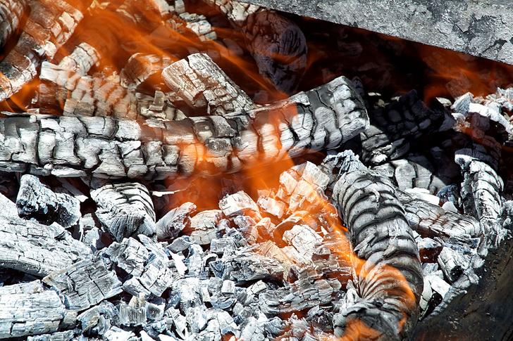 Фото №3 - Большое путешествие: пока огонь горит